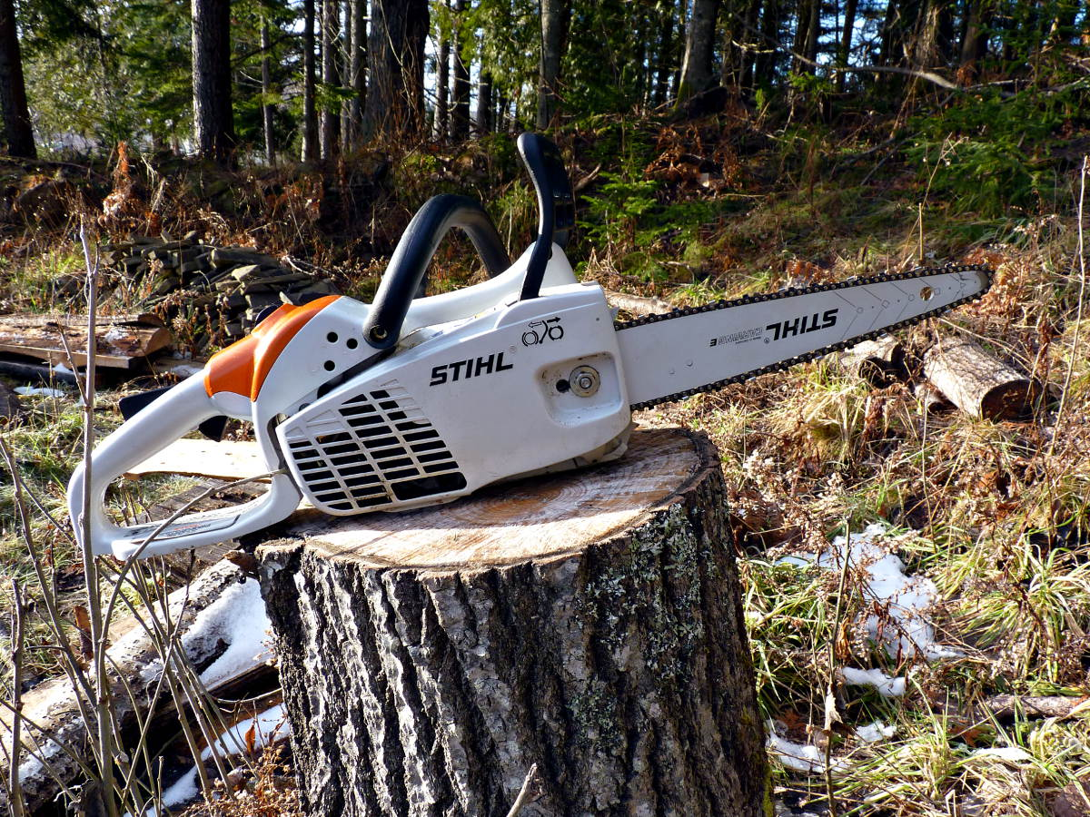 Stihl ms c carving conversion adventuresinchainsawing